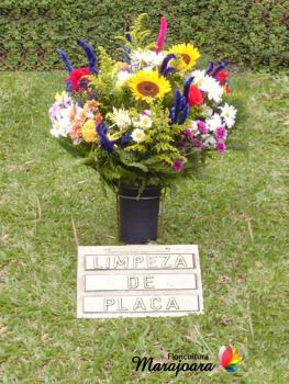 flor-do-campo1